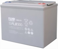 fiamm12-flb300-medium.jpg