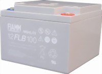 fiamm_12flb100-medium.jpg