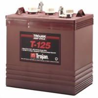 trojan-t125-semi-tractie-6v-225ah-accu-264x181x276-mm-medium.jpg